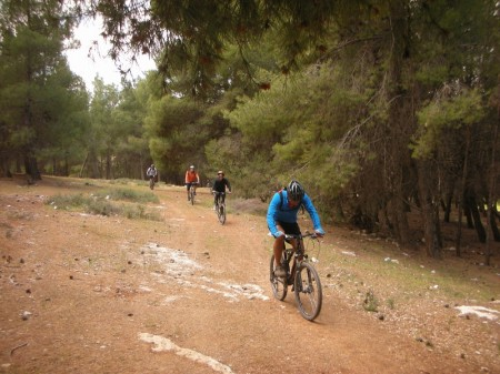 Sa'ad leads our group through Shwaifat Forest