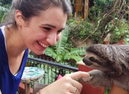 Hello Miss Sloth